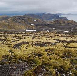 View from the slope of Beerenberg, Jan Mayen